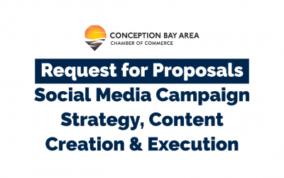 RFP: Social Media Awareness Campaign